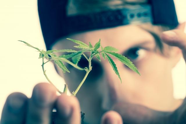 元KAT-TUN・田中聖容疑者、大麻の陽性反応【詳細ニュース】